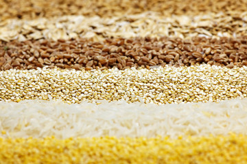 Various grains close up