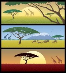 Africa Landscapes