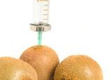 GMO - kiwi with sticked aged syringe on white poster