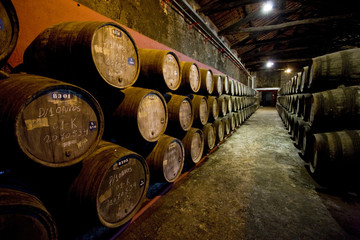 Burmester winery, Porto, Douro Province, Portugal