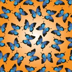 Papilio Ulysses butterflies seamless vector illustration