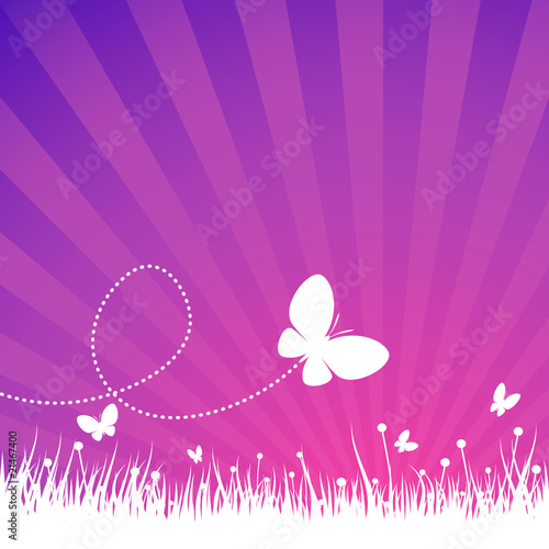Butterflies over white field with purple background