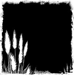 Pampas Grass Grunge Background