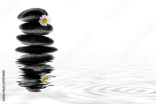 steine mit blume spiegeln sich im wasser von gerhard seybert lizenzfreies foto 21474860 auf. Black Bedroom Furniture Sets. Home Design Ideas