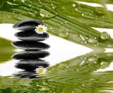 Bambus mit Hot Stones Sonnenlicht und Wasser-