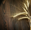Wheat Border over wooden background