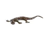 Jewelery - lizard figurine poster