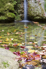 Waterfall and autumn colours