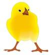 Easter chicken/kurczak wielkanocny