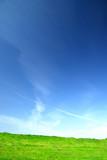 Summer vibrant landscape poster