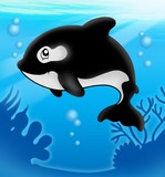 Cartoon killer whale in sea-