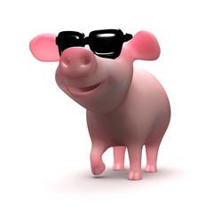 Cool pig wearing sunglasses