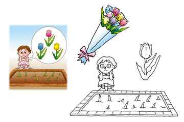 チューリップと花壇