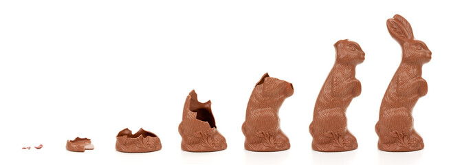 Easter Bunny Evolution