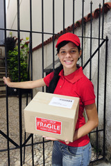 delivery courier or mailman delivering package
