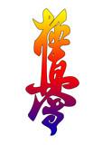 MARTIAL ARTS - KARATE KYOKUSHINKAI poster