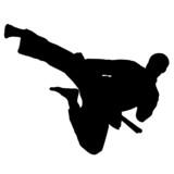 MARTIAL ARTS high jump.Vector. poster
