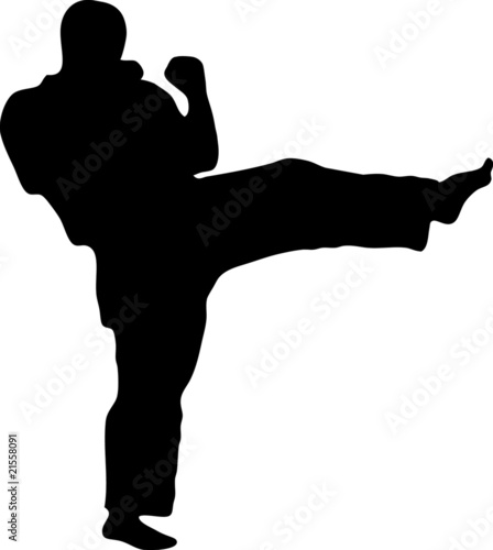 MARTIAL ARTS  kick.Vector.