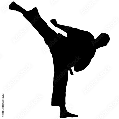 MARTIAL ARTS high kick.Vector.