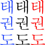Fighting arts TAEKWONDO,TAEKWON-DO,TAEKWON DO.Korea. poster