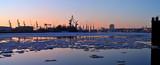 Eisgang auf der Elbe - 21559013