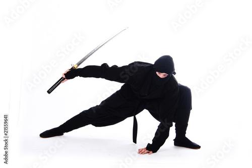 canvas print picture ninja