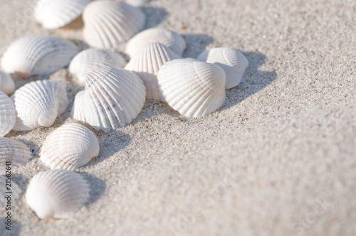 Fototapeten,sommer,meer,strand,sand
