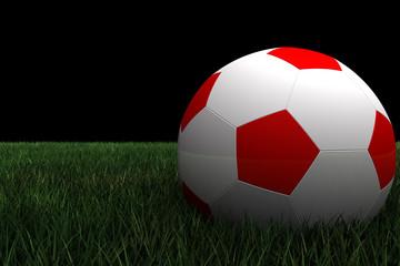 pelota de futbol sobre cesped