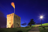 A view of a watchtower in Skopje, Macedonia at night poster
