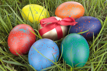 Colored easter  eggs on grass over white