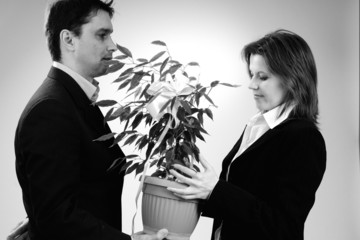 business man offering plant to his colleague