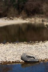 ruota sul greto di un fiume