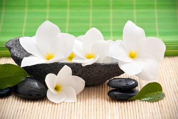 Composition zen avec fleurs de frangipanier