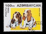 Azerbaijan mail stamp featuring basset hound puppies poster
