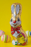 chocolate easter bunny and eggs, isolated over yellow