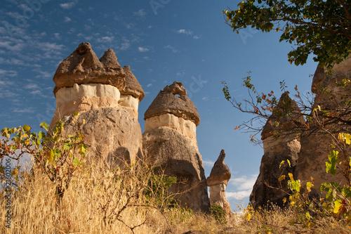 Leinwandbild Motiv Pillars of Cappadocia