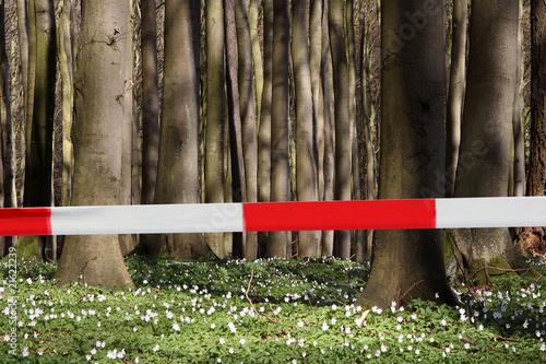 Wald gesperrt