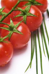 fresh tomatoes and chive