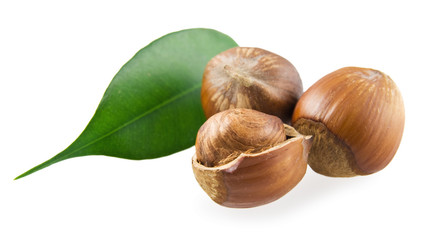 Hazelnuts and the green leaf