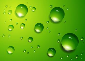 Water drops vector background.