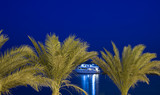 Motor yacht framed by palm trees at night poster