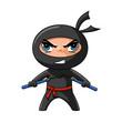 Ninja with nunchaku - 21661458