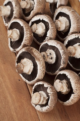 row of brown mushrooms on brown tray