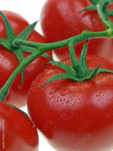 fresh red vine tomatoes