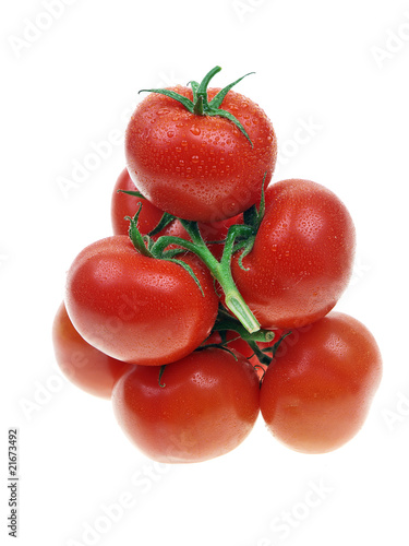 fresh red garden tomatoes