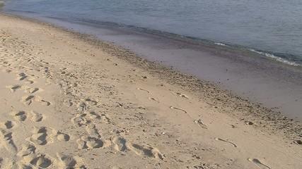 passeggiata solitaria sulla spiaggia