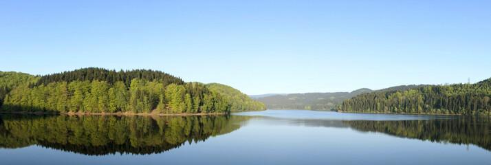 Wald reflektiert in einem See mit blauem Himmel