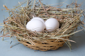 eggs lies in basket