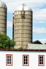 Silos Over White Barn