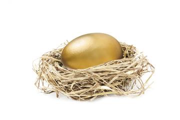 golden nest egg isolated on white